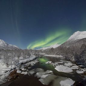 Aurora over river by Benny Høynes - Landscapes Starscapes ( canon, winter, green, snow, northern lights, aurora borealis, forest, norway )