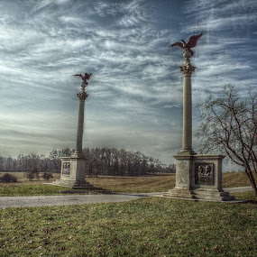 eagles by Giantfromsiberia Photographer - Buildings & Architecture Statues & Monuments ( two, eagle, park, pillar, valley, forge )