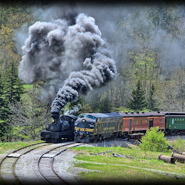 The Race is on by Will Zook - Transportation Trains