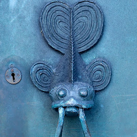 Fish Door Knob by Marc and Stefanie Moody - Novices Only Objects & Still Life ( door knob, metal, fish, galway, cathedral )