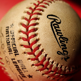 by Sandra Cannon - Sports & Fitness Baseball