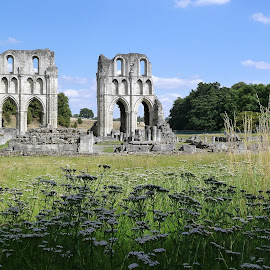 Roche abbey by Andy Bertenshaw - Buildings & Architecture Public & Historical ( monastic, ruins, historic, abbey, roche abbey )