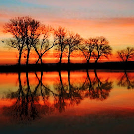 Sunrise at magic lake Lajmir.. by Željko Salai - Landscapes Sunsets & Sunrises
