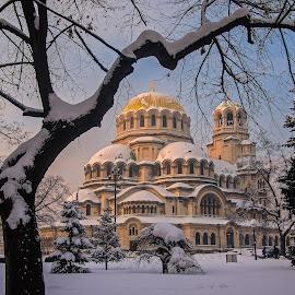 Alexander Nevsky Cathedral, Sofia by Estislav Ploshtakov - Buildings & Architecture Public & Historical