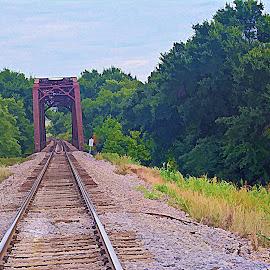 -------Rail Way Tracks and Bridge------ by Neal Hatcher - Transportation Railway Tracks