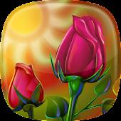 Hintergrundbilder Live Rosen 🌹 Blumen Bilder