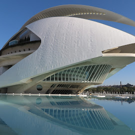 Opera House, Valencia by Luis Felipe Moreno Vázquez - City,  Street & Park  Street Scenes ( water, buildings, reflections, architecture, valencia, opera house, spain, calatrava )