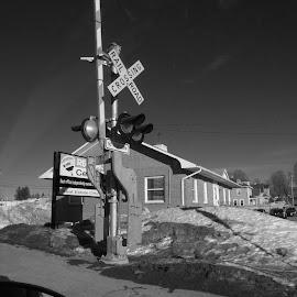 The Crossing by Gilman Michaud - City,  Street & Park  Street Scenes