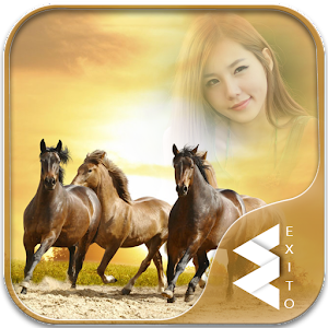 Horse Photo Frames for PC-Windows 7,8,10 and Mac