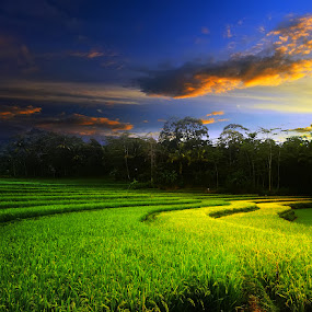 Gunung Pati-Another Spot by D'cast Photowork - Landscapes Prairies, Meadows & Fields ( farm, hill, village, green, landscape )