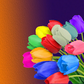 TULIP Flowers by Jaysinh Parmar - Digital Art Things