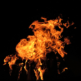Christmas Fire by Hal Gonzales - Abstract Fire & Fireworks ( night, fire, flame, logs, flames, night photography )