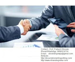 eBranding India Provides the Best Venture Funding Consultation Services In Indore