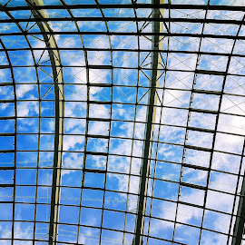 Flower Dome Ceiling, Gardens by the Bay  by Abdul Salim - Buildings & Architecture Architectural Detail