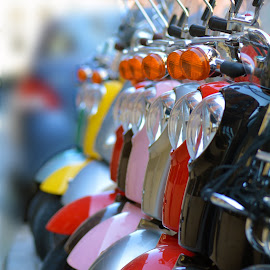 Montreal Vespas by Kevin Adams - Transportation Other