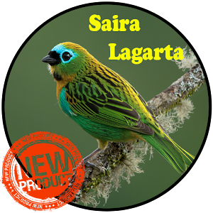 Download Canto De Saíra Lagarta For PC Windows and Mac