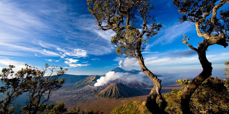 majestic earth by Agung Krisprimandoyo - Landscapes Travel ( indonesia, bromo )