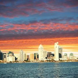 Sun Set San Diego  by Jen Palomba - City,  Street & Park  Skylines ( water, sun set, buildings )