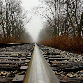 Into the Distance by Of-the-Star Designs - Transportation Trains ( train tracks, railroad tracks, train, tracks, trains )