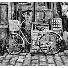 Time Discord by Lino Tabangin - Transportation Bicycles (  )