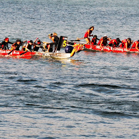 Dragon Boat Race #1 by Koh Chip Whye - Sports & Fitness Other Sports
