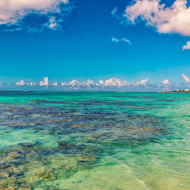 Shoal Bay, Anguilla by Greg Bracco - Landscapes Beaches ( canon, anguilla, canon 1d x mark ii, greg bracco, beaches. beach, greg bracco photography )