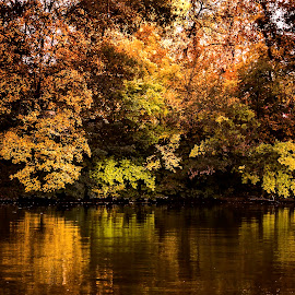 Autumn mirror .. by Mikaela Dana - Landscapes Waterscapes ( water, park, autumn, colors, lake, nikon, leaves )