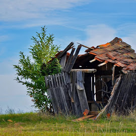 House by Aleš Maučec - Buildings & Architecture Homes ( history, old, sky, grass, destroyed, house )