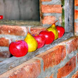 by Josip Kopčić - Food & Drink Fruits & Vegetables (  )