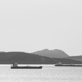 Ships  by Todd Reynolds - Black & White Landscapes