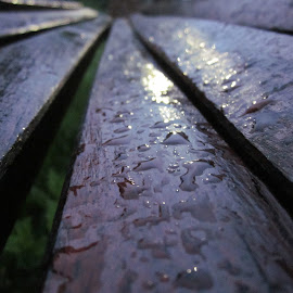 rain drops on the bench by Ana Djordjevic - Novices Only Abstract