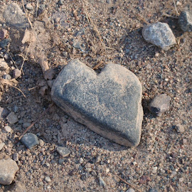 Have a heart. by Carolyn Kernan - Nature Up Close Rock & Stone
