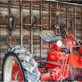 Antique Tractor  by Lorraine D.  Heaney - Transportation Other