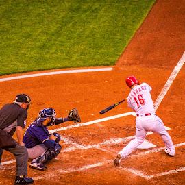 Barnhart Gets a Hit by Pat Lasley - Sports & Fitness Baseball ( catcher, reds, umpire, hit, baseball, batter, brewers )
