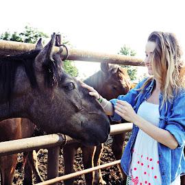 True love. by Şerban Adriana - Animals Horses (  )
