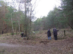 Photo 1 / 1 - Clearing scrub, maintaining heath, Feb 6th 2018