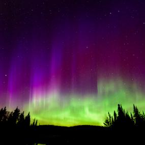 Brilliant Aurora by Jill Beim - Landscapes Starscapes ( aurora, aurora borealis, starscapes, night sky, nightscape )