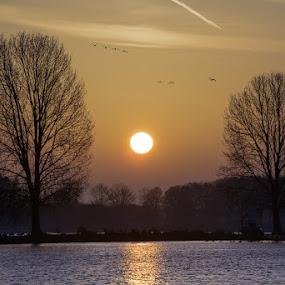 Sunset Maas Grave by Henk Verheyen - Landscapes Sunsets & Sunrises ( maas, sunset, grave, netherlands )