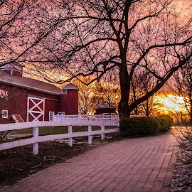 Parky's Farm yard by Pat Lasley - City,  Street & Park  City Parks ( farm, park, sunset, path, stable, golden hour,  )