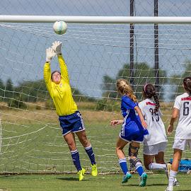 by Terry Watson - Sports & Fitness Soccer/Association football ( solar 9-10-16, sports, solar, soccer )