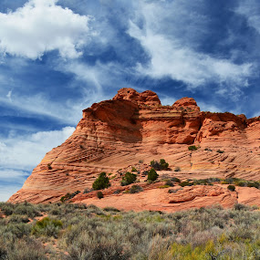 by Vita Perelchtein - Novices Only Landscapes ( explore, coyote buttes, blue sky, sky, cliffs, desert, nature, erosion, arizona, canyon, usa, hiking, hike )