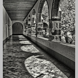 bellas artes, afternoon shadows by Jim Knoch - Black & White Buildings & Architecture ( bellas artes, sma, san miguel, black and white, san miguel de allende, mexico )