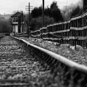 Tracks by Josh Hilton - City,  Street & Park  Historic Districts ( black and white, vintage, railroad, train, tracks )