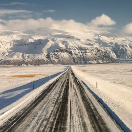 Road to Skaftafell Glacier by Michael Otter - Landscapes Travel