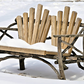 Goderich Winter 6 by Terry Saxby - Artistic Objects Furniture ( driftwood, winter, bench, canada, terry, goderich, ontario, garden, saxby, nancy )