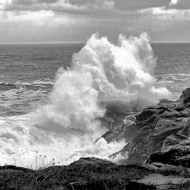 Breaker by Gaylord Mink - Black & White Landscapes ( b/w, waves, breaker, ocean,  )