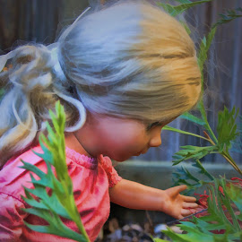 it's a dolls life by Carole Pallier Cazzazsnapz - Artistic Objects Toys ( plant, doll, toy, dress, garden, flower )