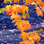 Beautiful Fall Color by Aritri Rhea - Nature Up Close Trees & Bushes