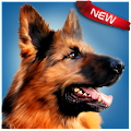 Game Dog Simulator APK for Kindle