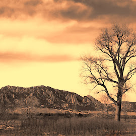 Flat Irons of Co. by Dan MacLellan - Landscapes Mountains & Hills ( clouds, flat irons, mountains, sky, tree )
